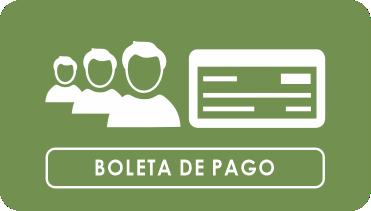 boletapago1